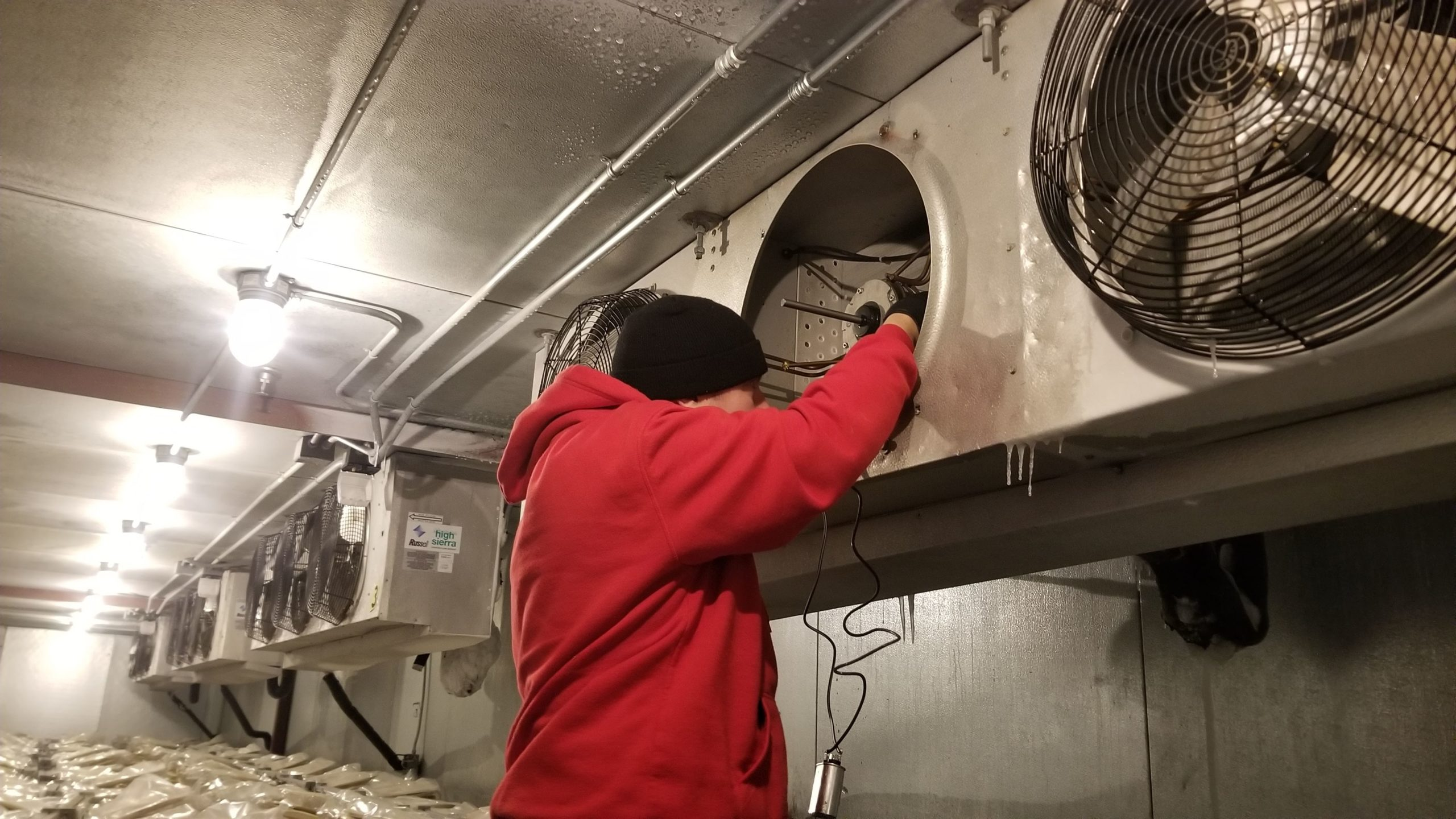 Walk-in Cooler Repair