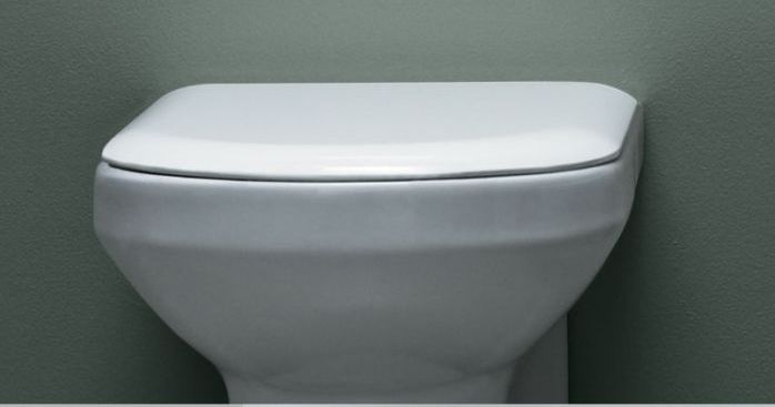 azzurra_thin_toilet_seat_and_cover_white